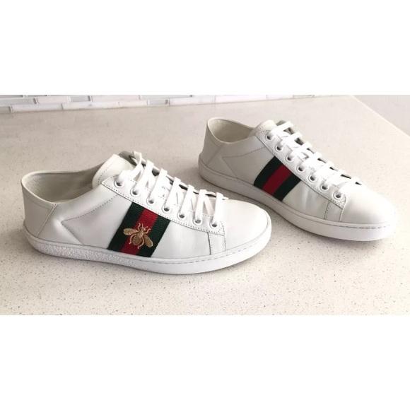 Final Salegucci Ace Sneakers   Poshmark